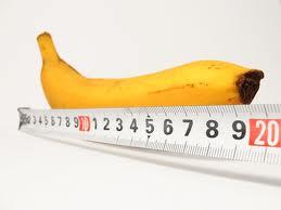ペニス,サイズ,日本人,平均,大きさ