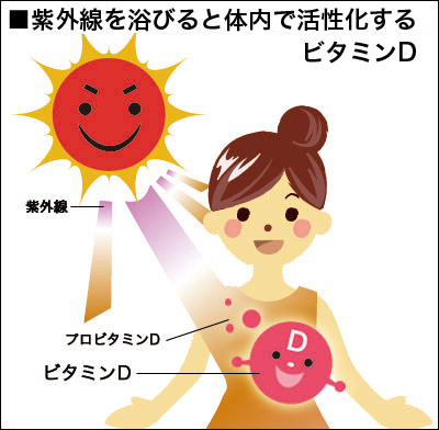 出典http://www.wakasanohimitsu.jp/seibun/vitamin-d/